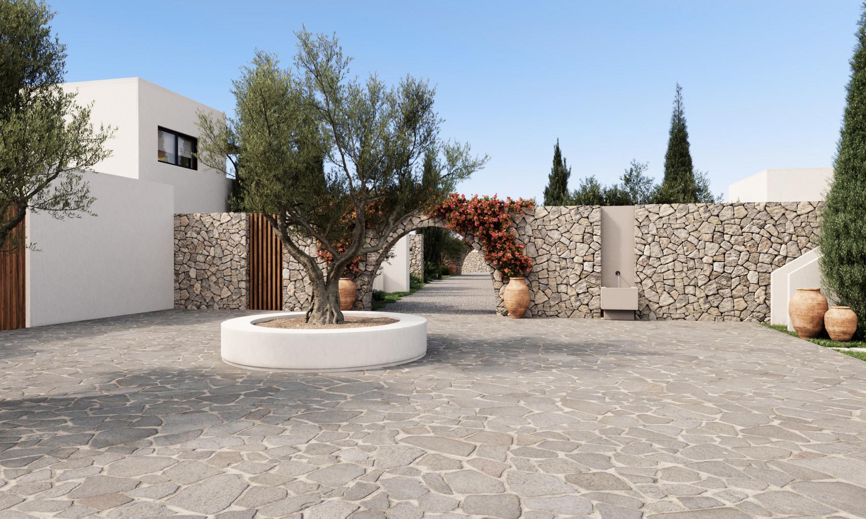 The Olivar Suites #5