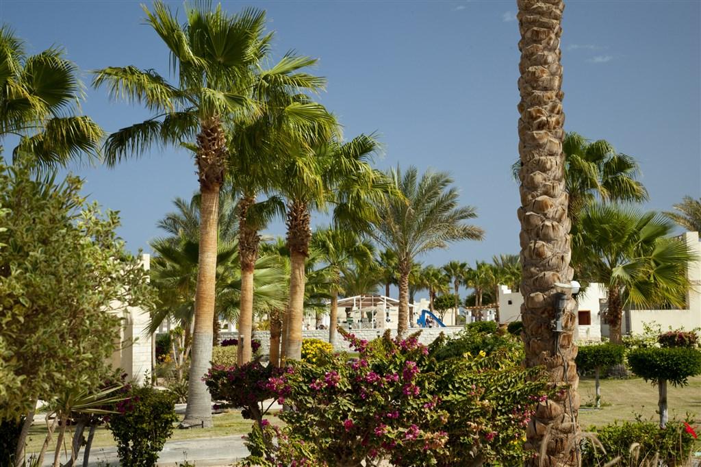 Hotel Coral Beach #3