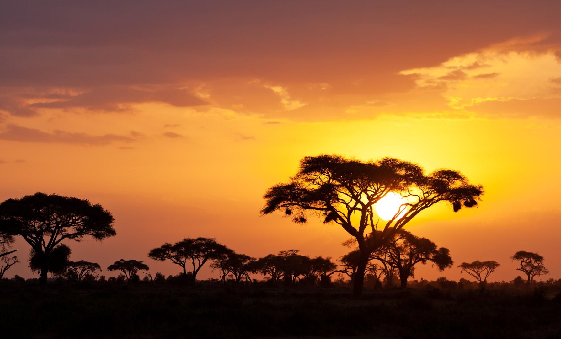 Safari okruh Keňou s pobytem u moře #4