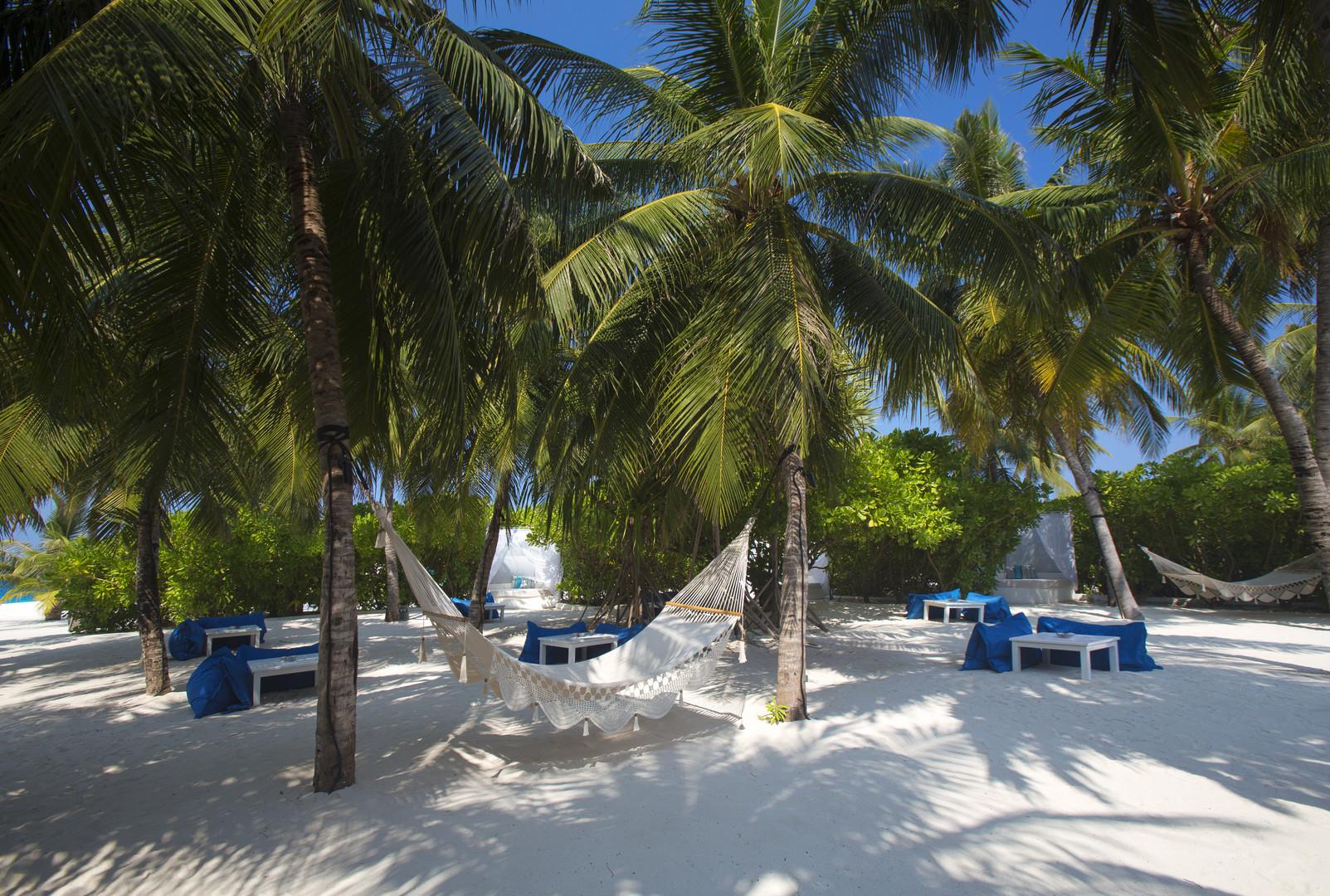 Hotel Velassaru Maldives #6