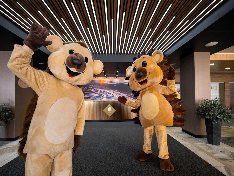 Clarion Hotel Špindlerův Mlýn #3