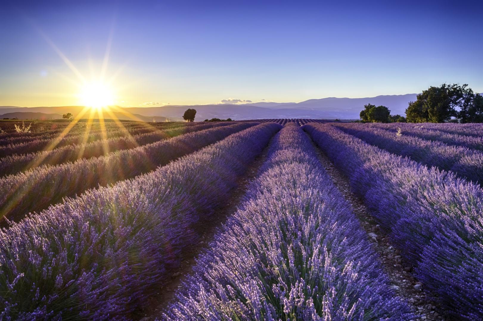 Nejkrásnější místa Provence (autobusem)
