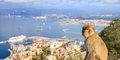 Perly Andalusie s pobytem u moře #4
