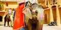 Rádžastán - putování do země králů #1