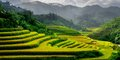 Panenskou krajinou severního Vietnamu #1