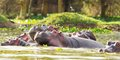 Safari okruh Keňou s pobytem u moře #5