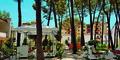 Hotel Diamma Resort #5