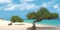 Karaibskie ABC: Aruba, Curaçao, Bonaire #5