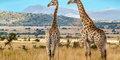 Afrykańskie cuda natury #3