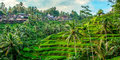 Tylko dla Ciebie – Bali, wyspa bogów #4