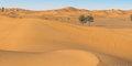 Dubaj i plaże Ras Al Khaimah #5