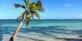 Karaibskie marzenia: Martynika i Gwadelupa #1