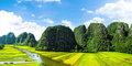 Tam gdzie żyły smoki: Wietnam #5