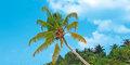 Z atolu na atol #3