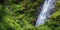 Reunion – jedna wyspa, cały świat #4