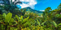Madagaskar, wyspa pachnąca wanilią #2