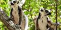 Madagaskar, wyspa pachnąca wanilią #4