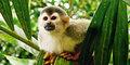 Marzenie podróżnika: Panama i Kostaryka #5