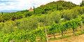 Zaproszenie do Toskanii #3
