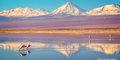 Poczuj Chile, smakuj Peru #3