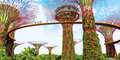 Fenomenalny Singapur i wyspy Indonezji #6