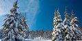 Ski & Spa Zieleniec #4