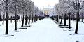 Zima w imperialnych stolicach #5