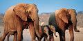 Namibia o wielu obliczach #1