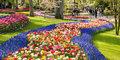 Latający Holender i słynna Parada Kwiatów! #3