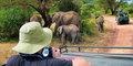 Tylko dla Ciebie – Dzika natura Afryki #5