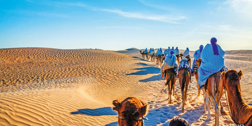 Wrota pustyni