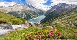 Австрия #4
