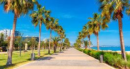 Cyprus #3