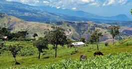 Haiti #6