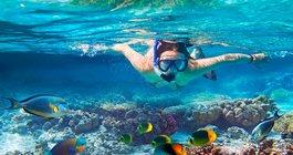Sharm el Sheikh #2