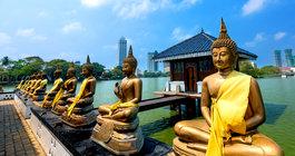 Шри-Ланка #4