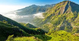 Шри-Ланка #5
