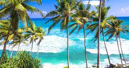 Sri Lanka #6