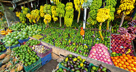 Шри-Ланка #6
