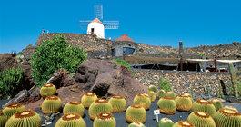 Canary Islands #4