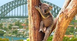 Australia #5