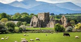 Irlandia #2