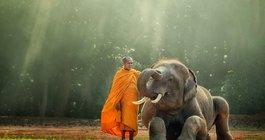 Kambodża #5