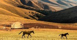 Kirgistan #5