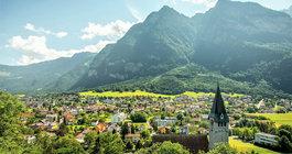 Liechtenstein #1