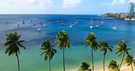 Martinique #2