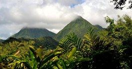 Martinique #3