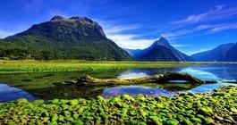 Новая Зеландия #1