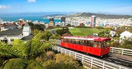 Новая Зеландия #5