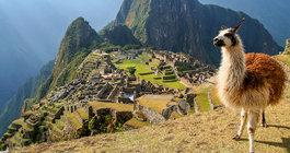 Peru #1